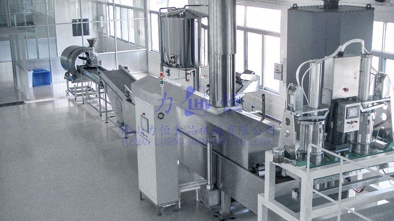 Potato rings / strips / slices extrusion frying line