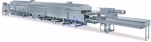 Continuous fish fryer production line